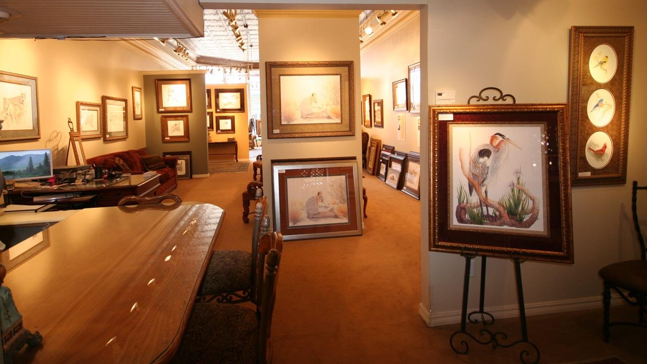 Susan Morrison's Signature Gallery
