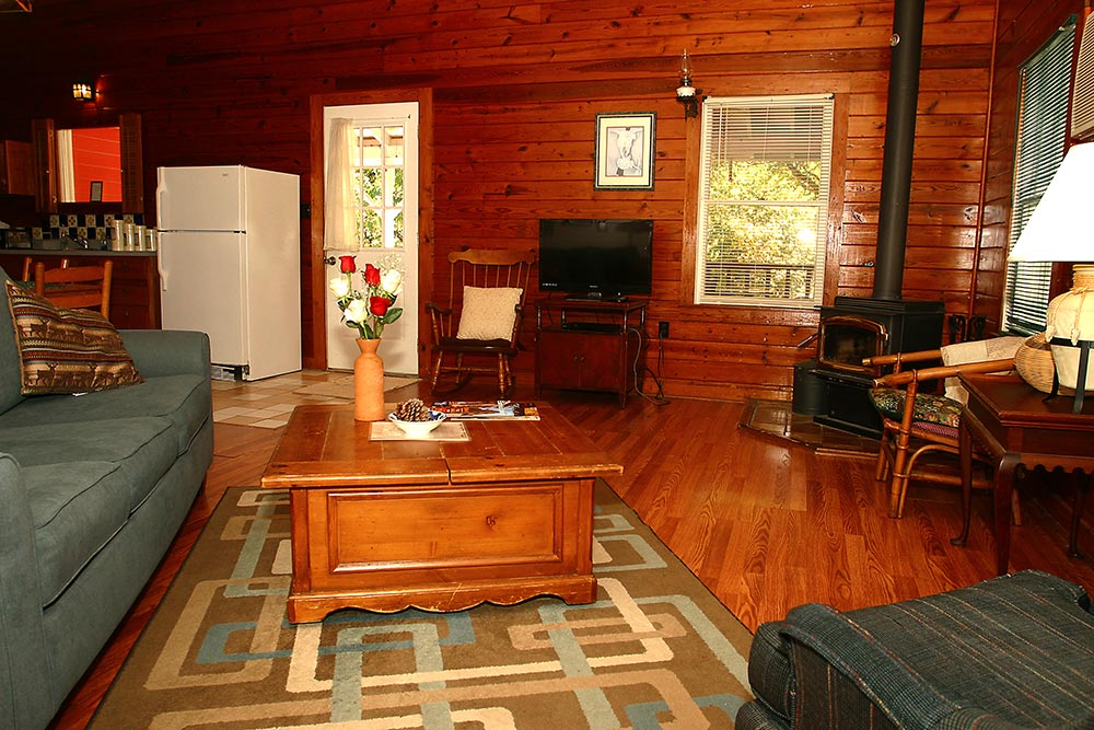 Cabin Roadrunner Living Room